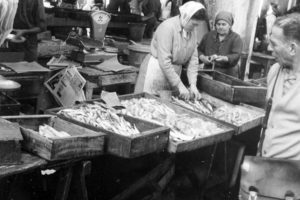 Le mie sardine…